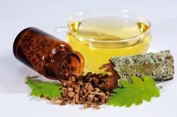 Польза коры дуба при лечении поноса